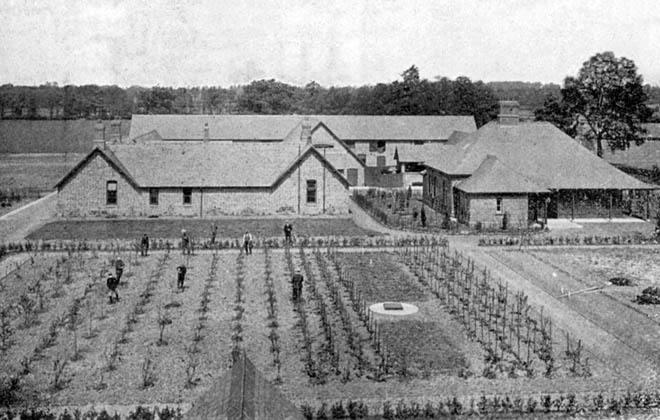 The beginnings of the University Farm c. 1905