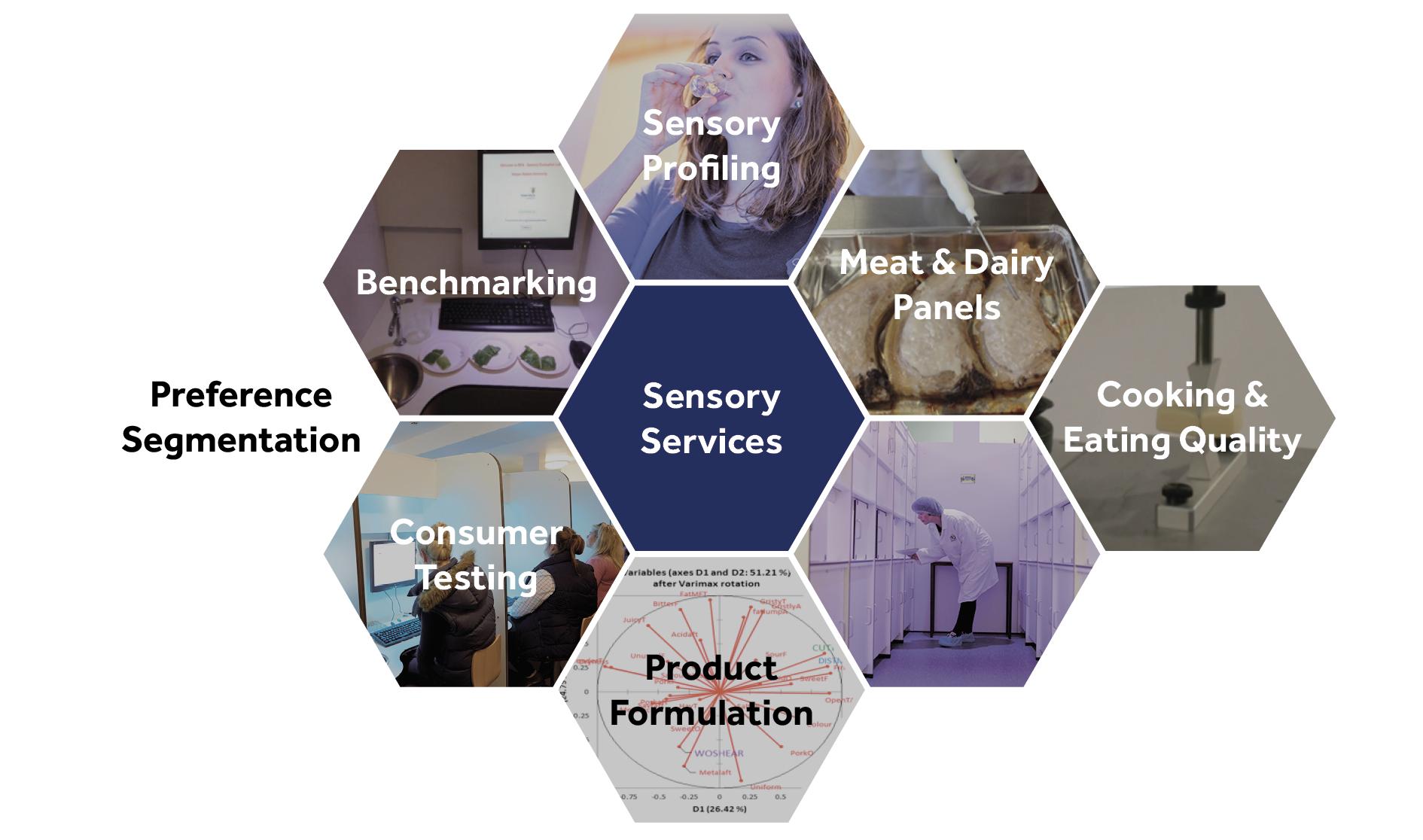 sensory evaluation services